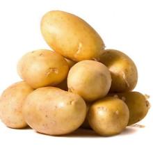 Nouvelle récolte de pommes de terre végétale