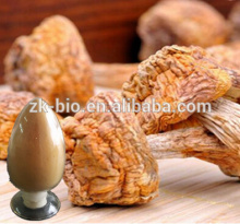 Hot selling Agaricus Blazei Murill Extract