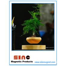 Usine en pot de lévitation magnétique créative / haut-parleur Bluetooth de Maglev