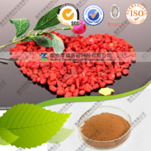 Distributeur Bulk Price Berries Goji Goji Berry Powder Supply