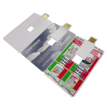 Promocional Custom Credit Card USB Flash Drive