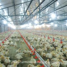 Automatische Geflügelfarm-Wasser-Trinker für Huhn