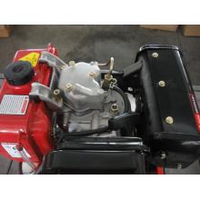 Vertical Single Cylinder Diesel Engine Set (ETK194F)