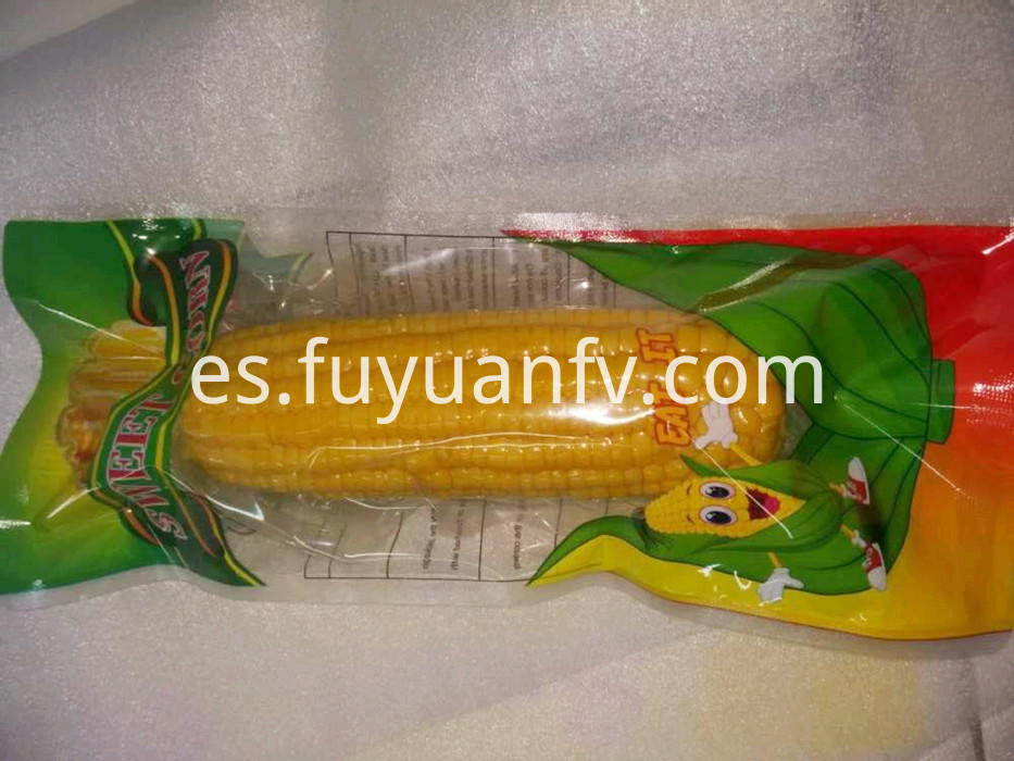 one piece fresh corn