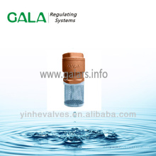 foot valve with strainer