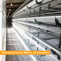 Hot Galvanized Material H Frame 5 Tiers Poultry Equipment for Laying Hens/Layers/Egg Chicken