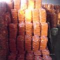 2016 Natur frische Karotten