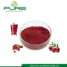 Natural Cranberry Extract With 25% Proanthocyanidins