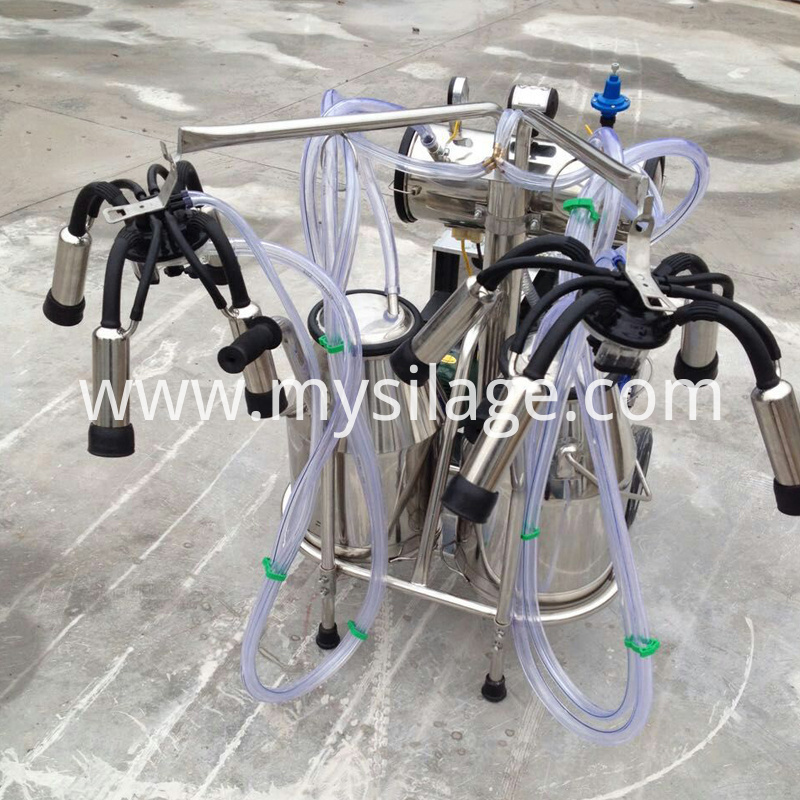 milking machine for cow