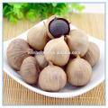Китайские черные семена чеснока, Китай Чёрный экстракт чеснока