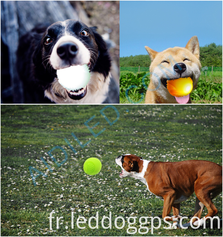 Toy Balls For Dogs