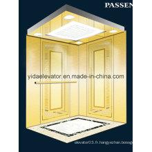Ascenseur de passager avec miroir gravé en acier inoxydable (JQ-N027)