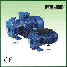 Twin-Impeller Centrifugal Water Booster Pumps
