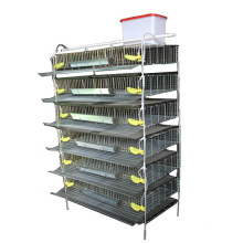 Hot sale 6 tiers H type quail cage for quail breeding