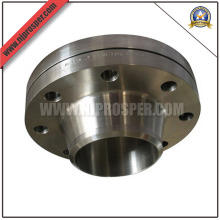 Stainless Steel Welding Neck Flanges (YZF-FZ169)