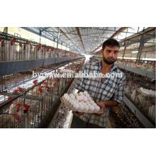 Jaula de Pollo con Capa de Aves de Corral con Sistema Automático de Alimentación / Beber