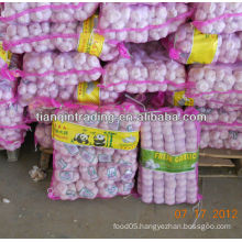 Chinese garlic exporter