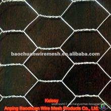 BWG 26 weißes pvc beschichtetes sechseckiges Drahtgeflecht