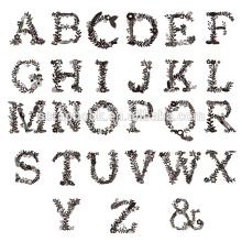 Слова дизайн четких марки для бумагоделательной записки