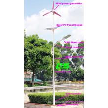 WPSRR-7703 3~15m Municipal Road Hot DIP Galvanized Steet Light Pole style
