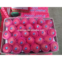 Überlegene Markenfrucht frische erröten roter Fujiapfel überlegene Markenfrucht frisches erröten roter Fuji Apfel