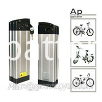 Silver Fish Bicycle Battery