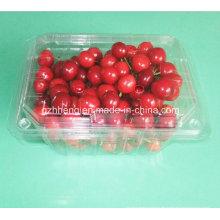 Benutzerdefinierte Transparent klar Kunststoff Lunchbox (PET-Behälter)