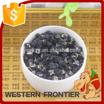 Chine QingHai bio lyophilisé Black Goji Berry