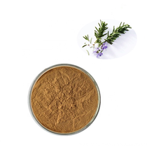 GMP Manufacturer Supply 100% Natural Antioxidant Rosemary Herb Extract / 6%~25% Carnosic Acid