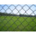Hot Sale Chain Link Fence