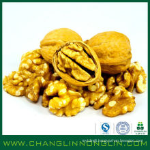 2014 new prodcuts full of high protein organic walnuts in shell for papa