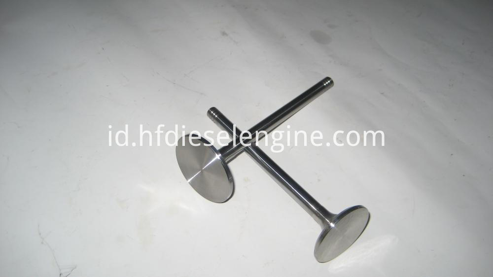1013 Intake and Exhaust Valves (5)