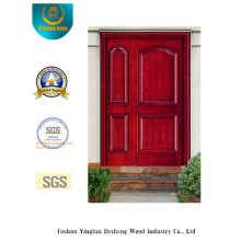 Simplestyle Picture Door for Entrance (s-1021)