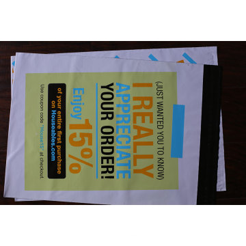 Popular Custom Printed Logo Mailing Bag/Poly Mailer