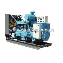 250kva Natural Gas Generator zum Verkauf