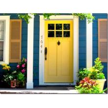 Puertas delanteras elegantes de moda de estilo europeo para Villa