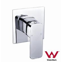 Ванная комната в стене латунь смеситель для душа (CG615)