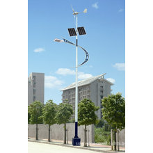 Solar And Wind 100w Hybrid Generating System Off Grid Outdoor Street Lighting