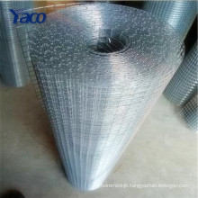 30m length per roll galvanized welded wire mesh bird cage wire mesh screen
