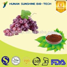 Promover el crecimiento del cabello Proantocianidinas del extracto de semilla de uva