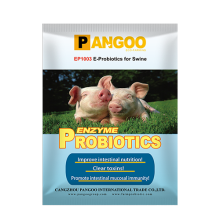 EP1003 E- Probiotics for Swine