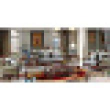 Klassisches Ledersofa für Wohnzimmermöbel (510C)