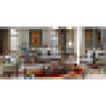 Классический кожаный диван комплект для гостиной, мебель (510C)