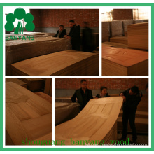 MDF High Quality Doorskin