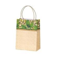 Sugar Cane Paper Bag