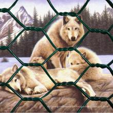 Animal Net PVC Coated Hexagonal Farm Netting