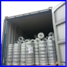 Galvanized Grassland Fence/Field Fence/Grassland Netting (Gold supplier/Manufacturer/ISO)