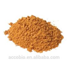 Экстракт высокое качество 100% натуральный коры Йохимбе порошок оптом Йохимбин HCl 98%