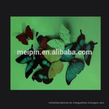 Vinilo / adhesivo fotoluminiscente autoadhesivo en serigrafía