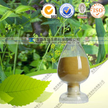 Natural Radix Stellariae Extract 10: 1